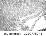 abstract background. monochrome ... | Shutterstock . vector #1230775741