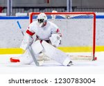 ice hockey goalie during a game | Shutterstock . vector #1230783004