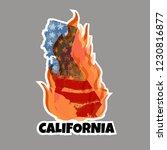 California  Usa 15 November...
