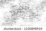 grunge watercolor dry brush... | Shutterstock .eps vector #1230898924