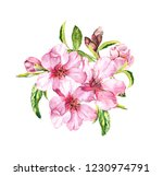 spring blossom   bouquet of... | Shutterstock . vector #1230974791
