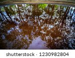 puddle like a water mirror... | Shutterstock . vector #1230982804