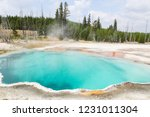 bright turquoise boiling and... | Shutterstock . vector #1231011304