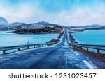 winter road over the sea with... | Shutterstock . vector #1231023457