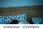 sleeping in the wicker bed | Shutterstock . vector #1231058641