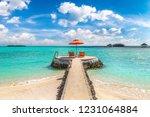 maldives   june 24  2018 ...   Shutterstock . vector #1231064884
