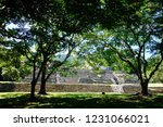 ancient mayan pyramid in... | Shutterstock . vector #1231066021