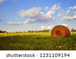 Rolled Hay Bale In A Field In...