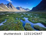 Marshy landscape along the trail in Akshayuk Pass, Baffin Island, Nunavut