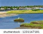 Great White Egret Marsh Padanaram Village Harbor Bridge Buzzards Bay Dartmouth Masschusetts