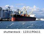 Bulk Carrier To Transport...