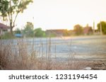 nature background background... | Shutterstock . vector #1231194454