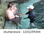 mexico  yucatan peninsula  ... | Shutterstock . vector #1231259344