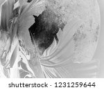 abstract black and white waves  ... | Shutterstock . vector #1231259644