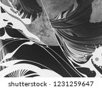 abstract black and white waves  ... | Shutterstock . vector #1231259647