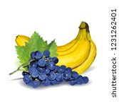 fresh grapes  nutritious and... | Shutterstock .eps vector #1231262401