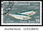 Small photo of ROMANIA - CIRCA 1960: a stamp printed in the Romania shows Pontic Shad, Alosa Immaculata, Alosa Pontica, Fish, circa 1960