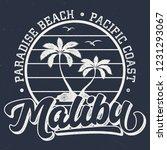 Paradise Beach Malibu   Aged...