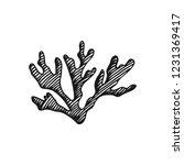 alga edible underwater vector... | Shutterstock .eps vector #1231369417