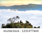 sitting alone on a peak of the... | Shutterstock . vector #1231377664