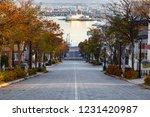 romantic slope in hakodate city ...   Shutterstock . vector #1231420987