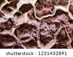 honeycomb weathering in a... | Shutterstock . vector #1231432891