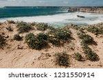 beautiful views of the atlantic ...   Shutterstock . vector #1231550914