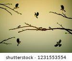 titmouse birds on the tree...   Shutterstock .eps vector #1231553554