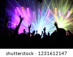 the audience raised hands at a... | Shutterstock . vector #1231612147