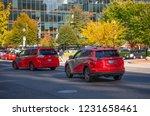 washington  dc  usa   october ...   Shutterstock . vector #1231658461