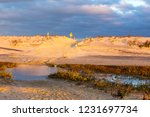 sand dunes and clouds at... | Shutterstock . vector #1231697734