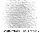 abstract background. monochrome ... | Shutterstock . vector #1231794817