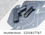 close up on the gun and a target | Shutterstock . vector #1231817767