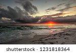 gulf of mexico florida... | Shutterstock . vector #1231818364