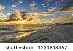 gulf of mexico florida... | Shutterstock . vector #1231818367