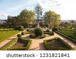 ajuda botanical garden  jardim... | Shutterstock . vector #1231821841