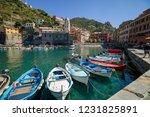 marina of vernazza  cinque... | Shutterstock . vector #1231825891