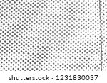 abstract background. monochrome ... | Shutterstock . vector #1231830037