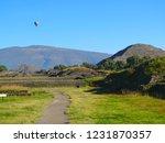 mexico  pre hispanic city of... | Shutterstock . vector #1231870357