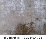 texture unique in wall old ... | Shutterstock . vector #1231914781