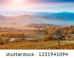 autumn grazing scenery on... | Shutterstock . vector #1231941094