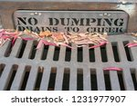 No Dumping Drains To Creek  ...