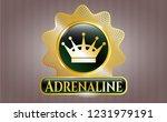 shiny badge with queen crown... | Shutterstock .eps vector #1231979191