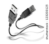 Two Black Usb Plugs Isolated O...