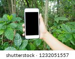 hand holding smartphone at... | Shutterstock . vector #1232051557