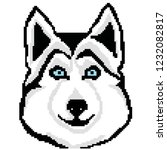 muzzle dog breed husky drawn... | Shutterstock .eps vector #1232082817