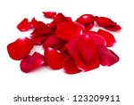 Stock photo red rose petals on white background 123209911