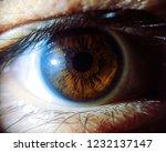 eye in macro   Shutterstock . vector #1232137147