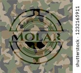 molar on camouflage pattern | Shutterstock .eps vector #1232165911