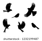 slhouette of sparrow or... | Shutterstock .eps vector #1232199487
